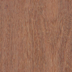 mtex_20326, Wood, Veneer, Architektur, CAD, Textur, Tiles, kostenlos, free, Wood, Atlas Holz AG