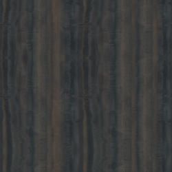 atlas holz ag eiche europ isch spiegel free cad textur. Black Bedroom Furniture Sets. Home Design Ideas
