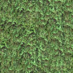 mtex_22001, Natur, Wald, Architektur, CAD, Textur, Tiles, kostenlos, free, Nature, xyz mtextur