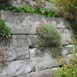 Rorschacher Sandstein - Gartengestaltung, ProNaturstein, k. a., by mtextur