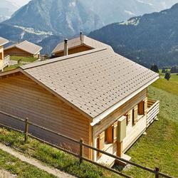 Einfamilienhäuser Urmein, Eternit (Schweiz) AG,  BVH + Partner AG, Bonaduz, by mtextur