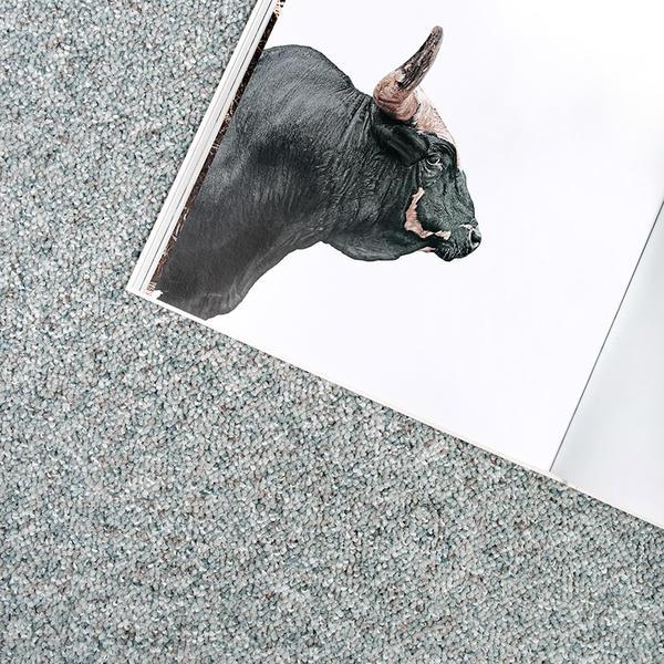 Toro, Tisca Tischhauser AG, k. A., by mtextur