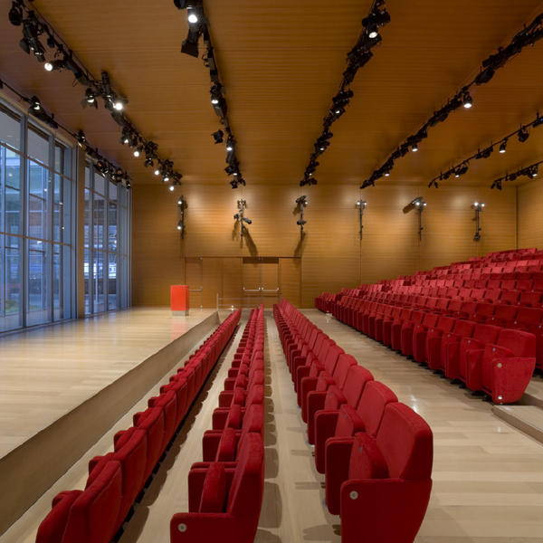 New York Times, Topakustik, Renzo Piano, Paris (FR) / New York (USA), by mtextur